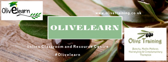 OlivElearn Online Classroom
